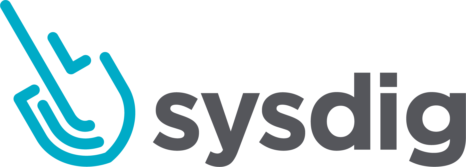 sysdig_Horz_Color_Logo_RGB_lrg